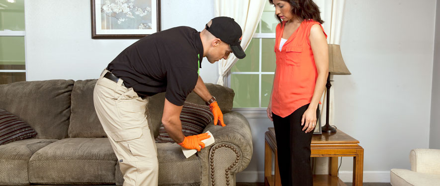 Lake Forest, CA carpet upholstery cleaning